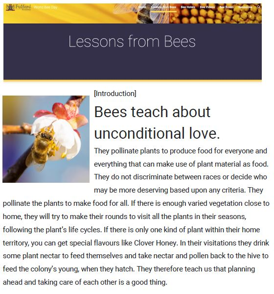 Lessons from Bees